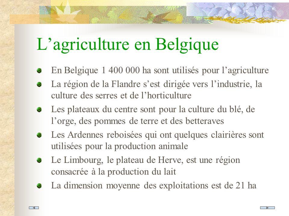 L'agriculture en Belgique