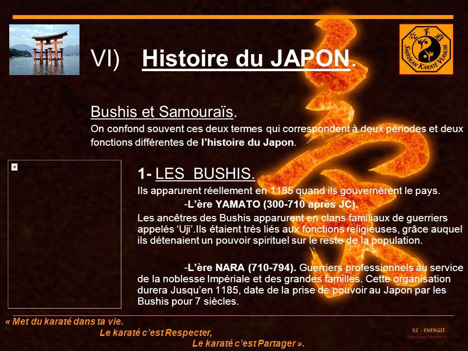 VI) Histoire du JAPON. Bushis et Samouraïs. 1- LES BUSHIS.
