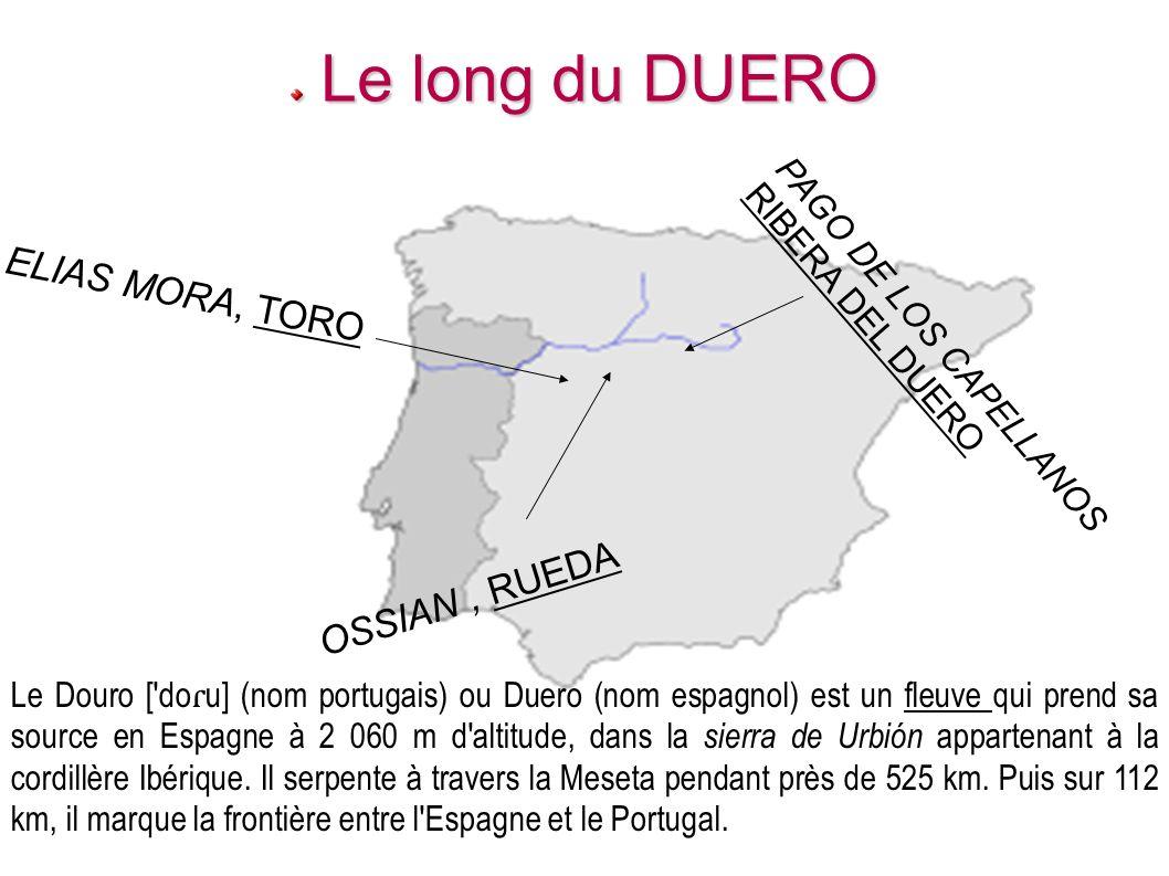 Le long du DUERO ELIAS MORA, TORO OSSIAN , RUEDA