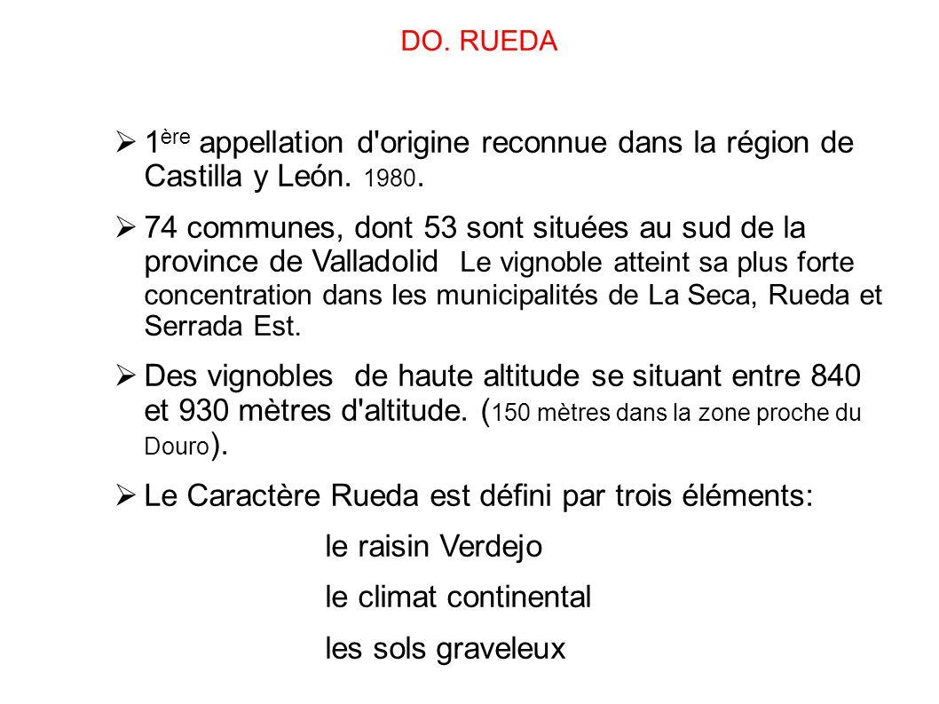 Le Caractère Rueda est défini par trois éléments: le raisin Verdejo