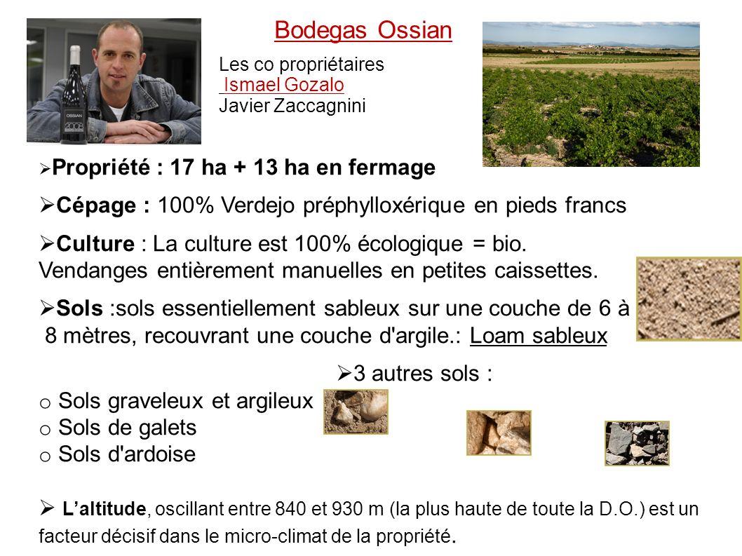 Bodegas Ossian Les co propriétaires. Ismael Gozalo. Javier Zaccagnini. Pr. Propriété : 17 ha + 13 ha en fermage.