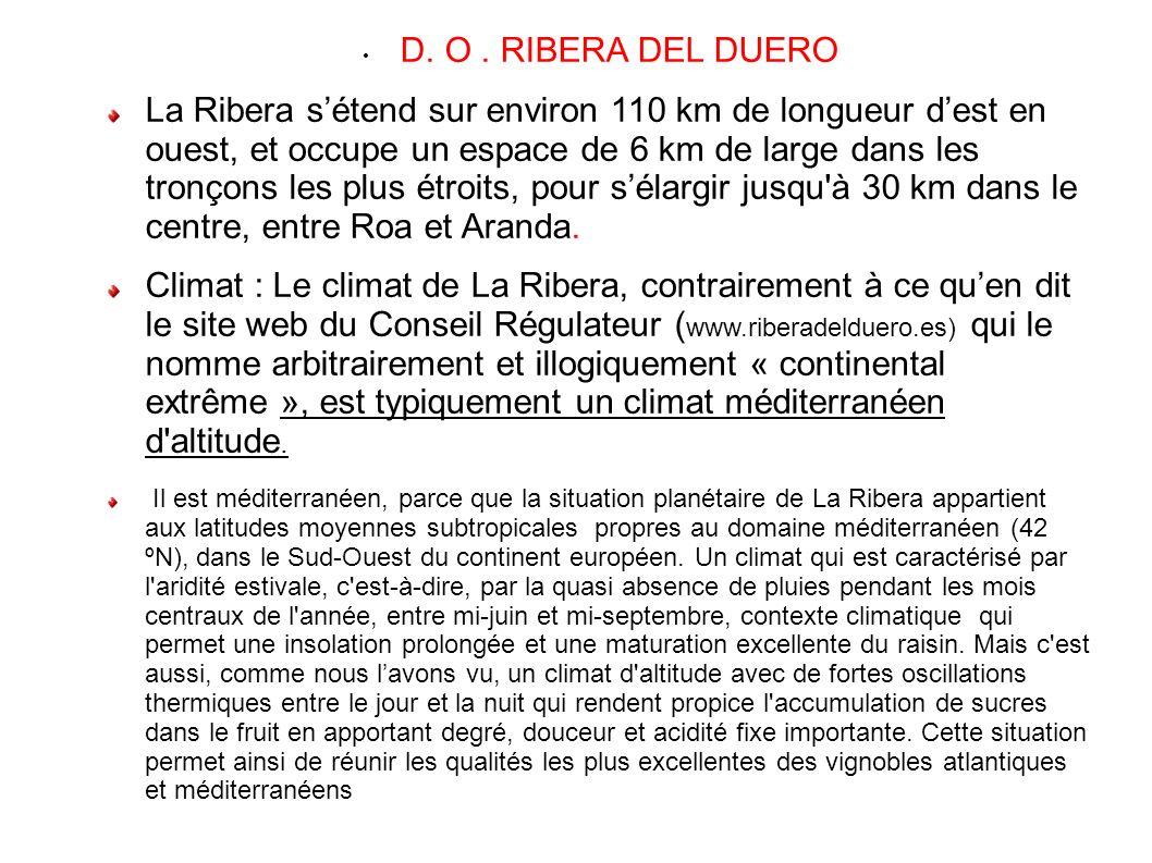 D. O . RIBERA DEL DUERO