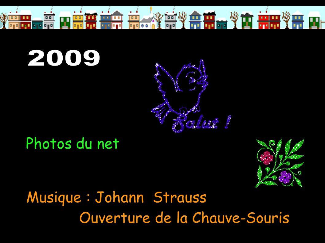 Musique : Johann Strauss Ouverture de la Chauve-Souris