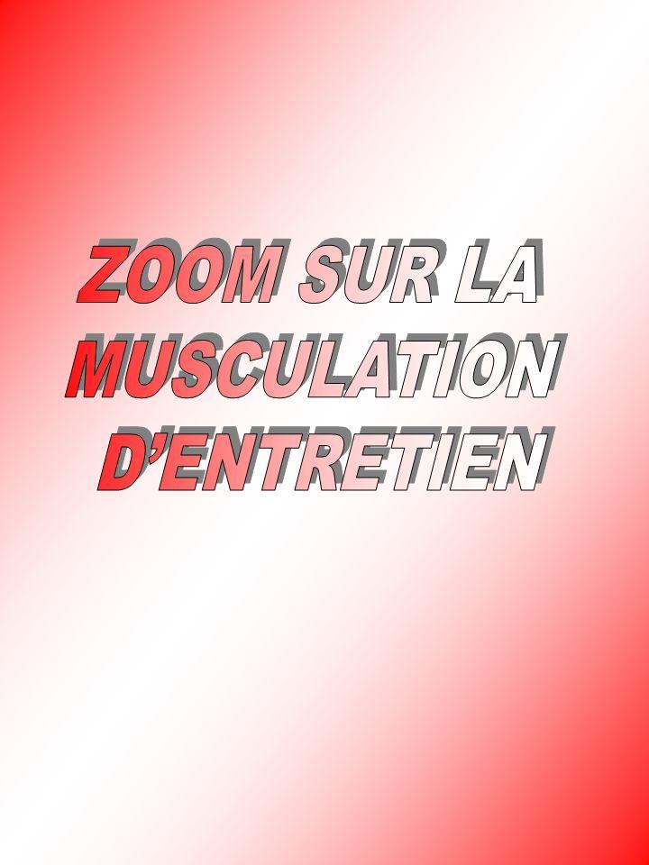 ZOOM SUR LA MUSCULATION D'ENTRETIEN