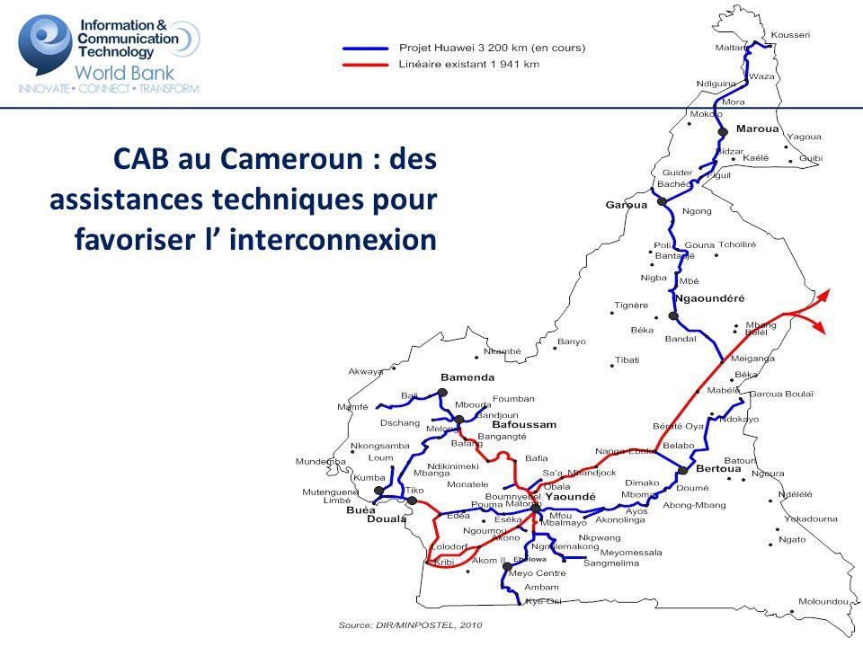 CAB au Cameroun : des assistances techniques pour favoriser l' interconnexion