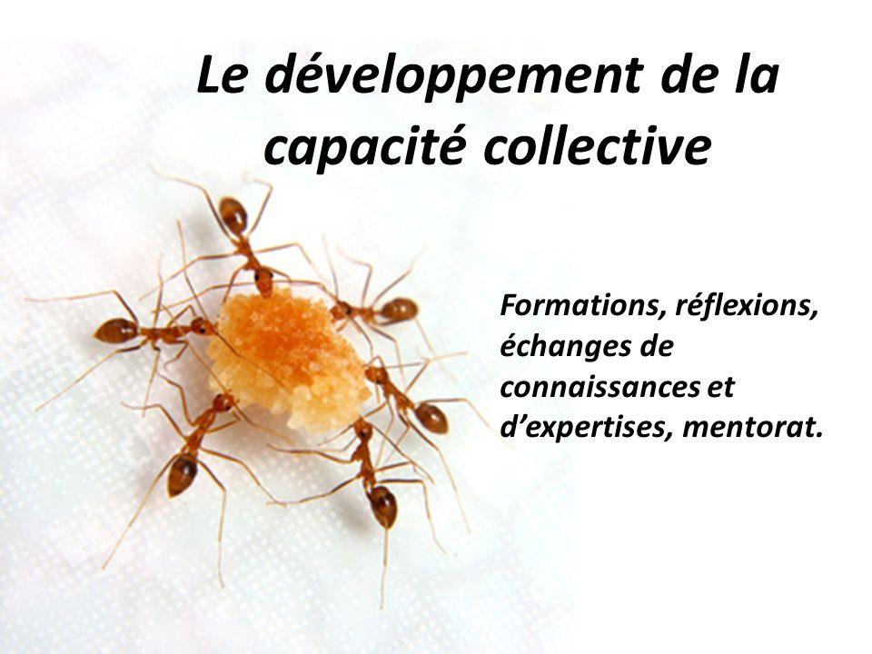 Le développement de la capacité collective