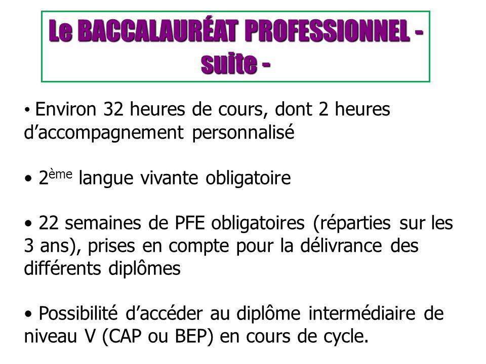 Le BACCALAURÉAT PROFESSIONNEL - suite -