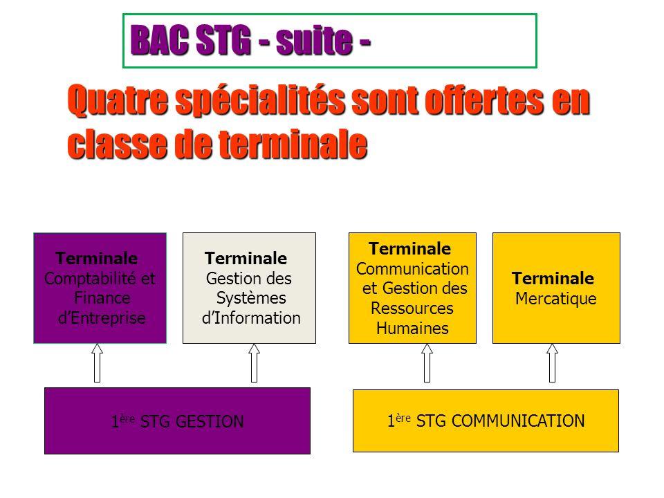 Quatre spécialités sont offertes en classe de terminale