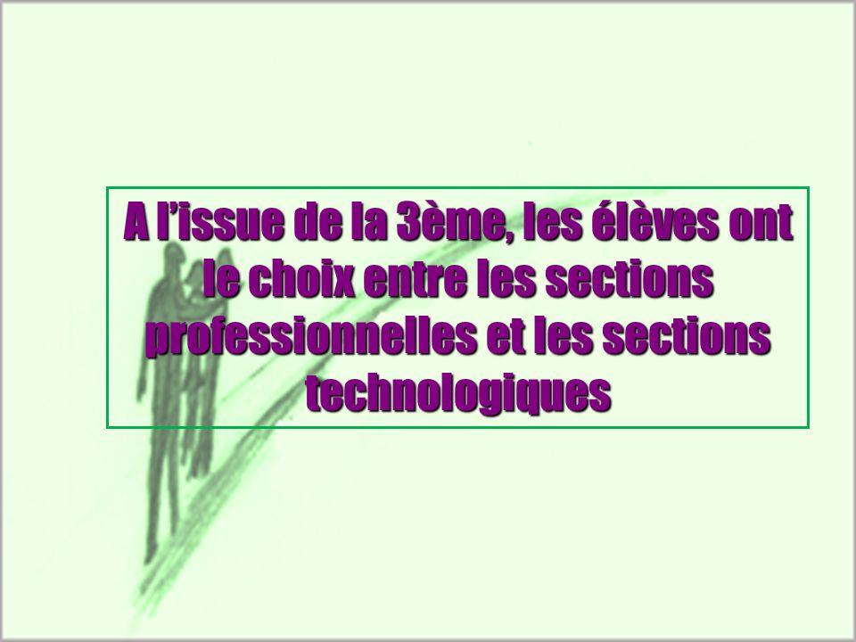 A l'issue de la 3ème, les élèves ont le choix entre les sections professionnelles et les sections technologiques