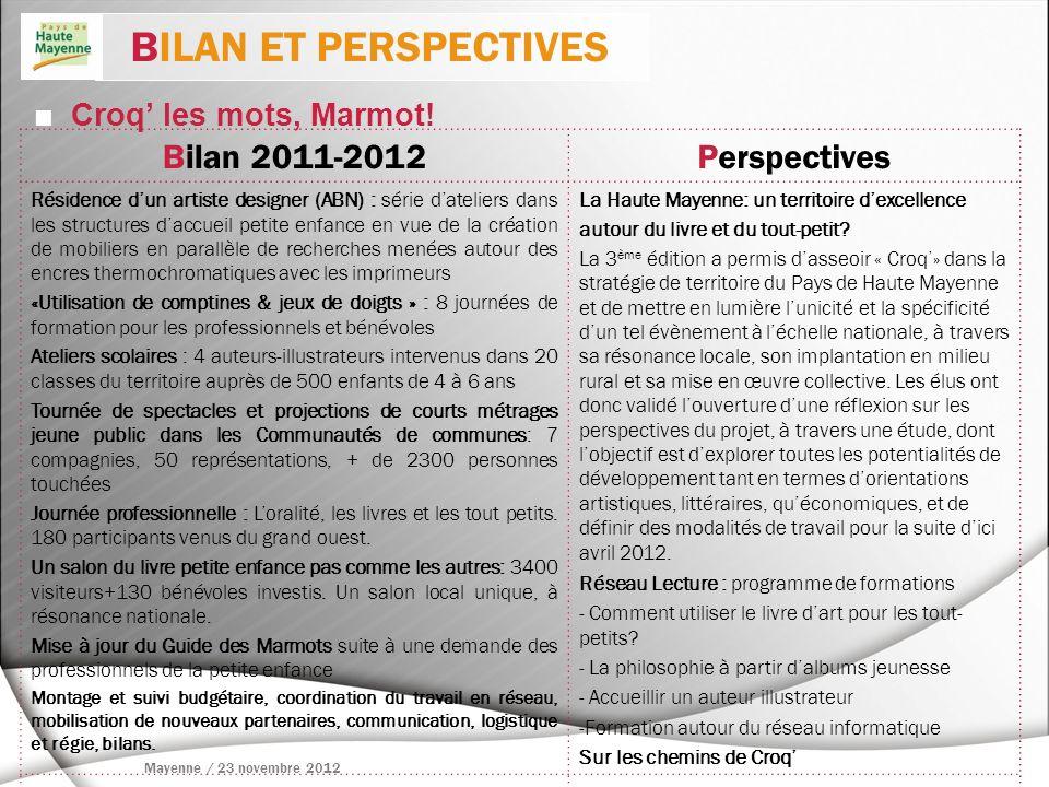 BILAN ET PERSPECTIVES Bilan 2011-2012 Perspectives