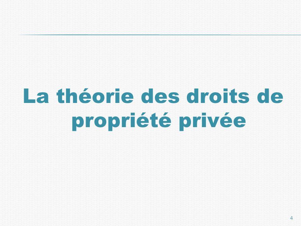 La théorie des droits de propriété privée