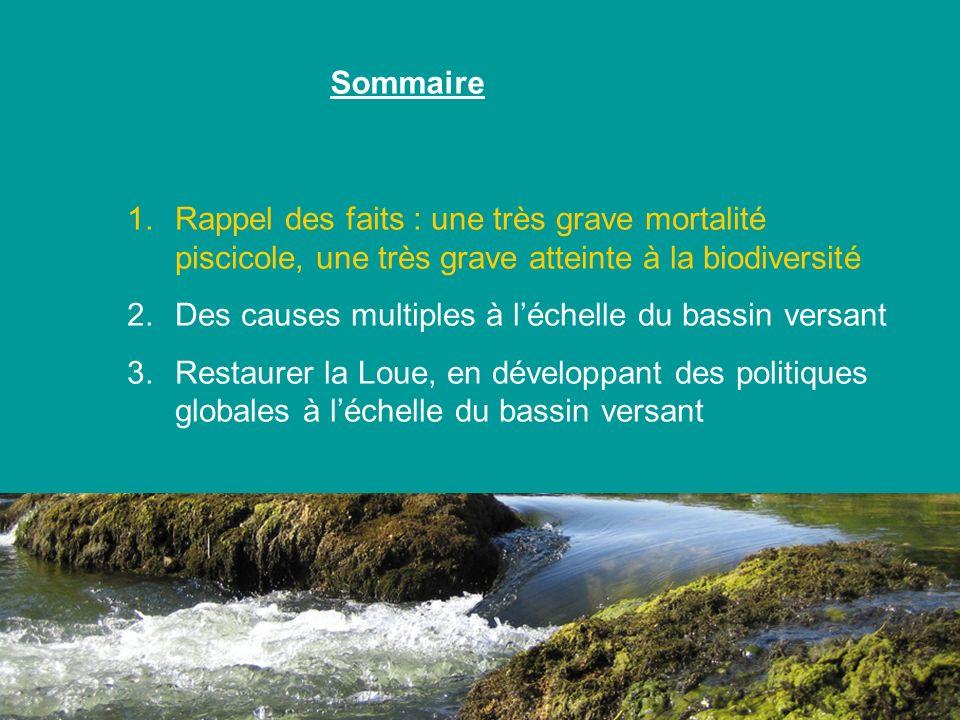 Sommaire Rappel des faits : une très grave mortalité piscicole, une très grave atteinte à la biodiversité.