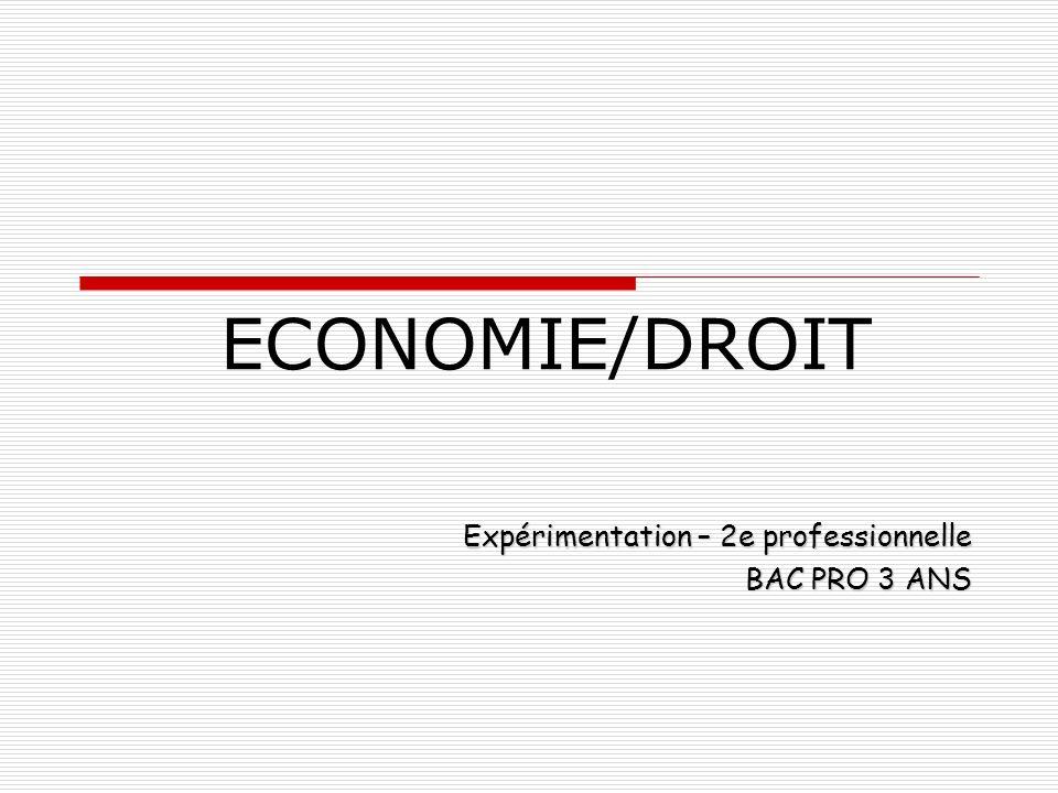 Expérimentation – 2e professionnelle BAC PRO 3 ANS