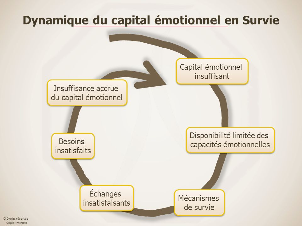 Dynamique du capital émotionnel en Survie