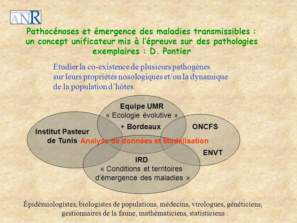 Pathocénoses et émergence des maladies transmissibles :