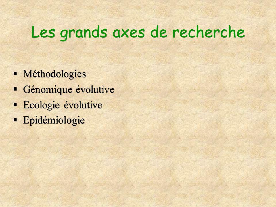 Les grands axes de recherche