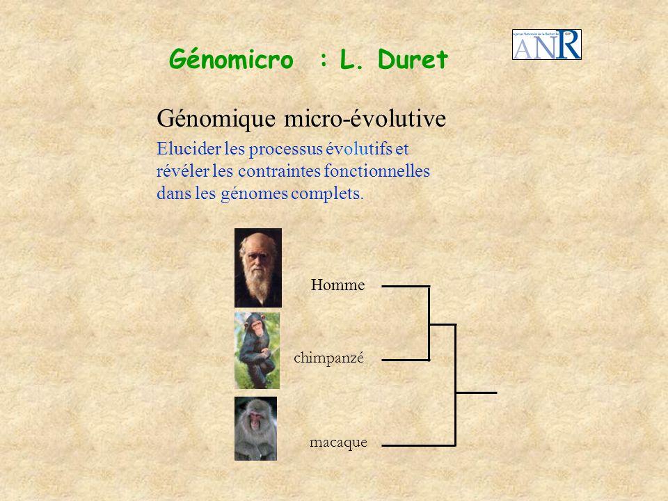 Génomique micro-évolutive