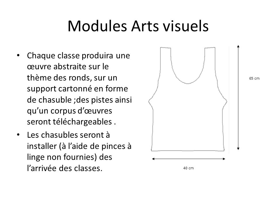 Modules Arts visuels 65 cm. 40 cm.
