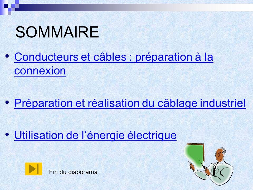 SOMMAIRE Conducteurs et câbles : préparation à la connexion