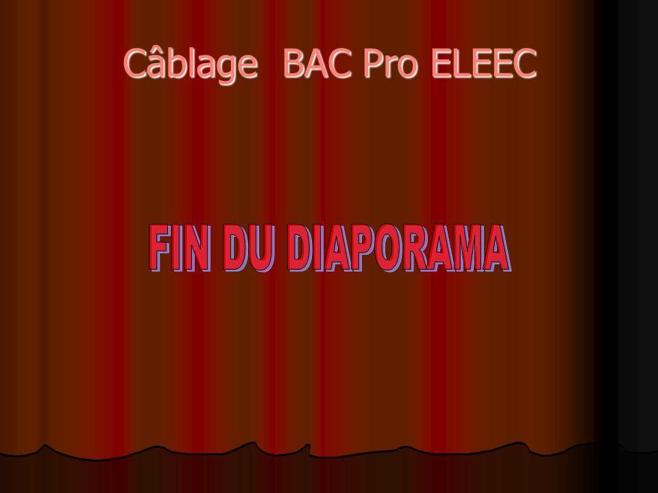 Câblage BAC Pro ELEEC FIN DU DIAPORAMA