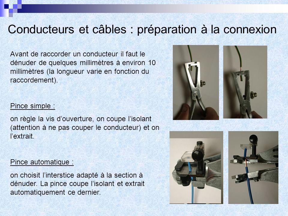 Conducteurs et câbles : préparation à la connexion
