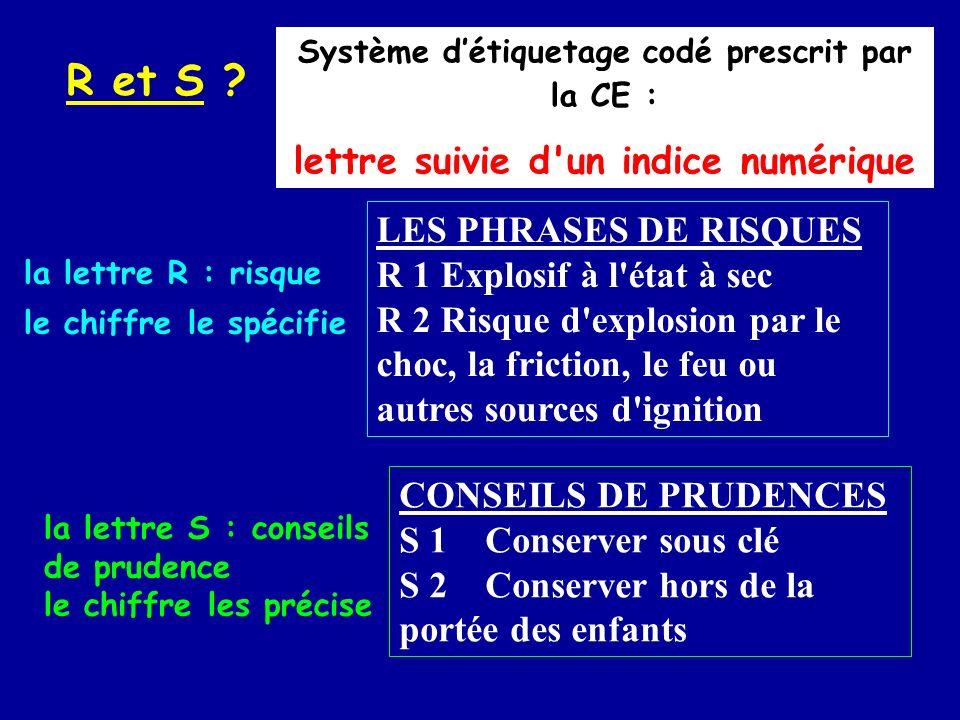 R et S lettre suivie d un indice numérique LES PHRASES DE RISQUES