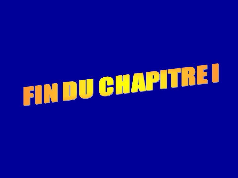 FIN DU CHAPITRE I