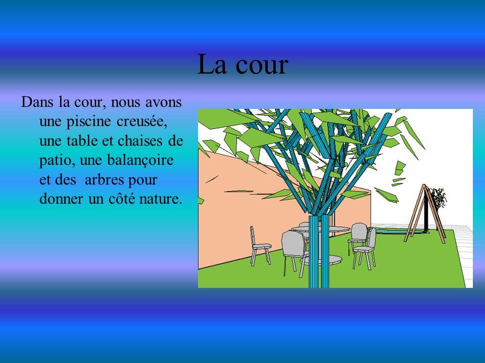 La cour Dans la cour, nous avons une piscine creusée, une table et chaises de patio, une balançoire et des arbres pour donner un côté nature.
