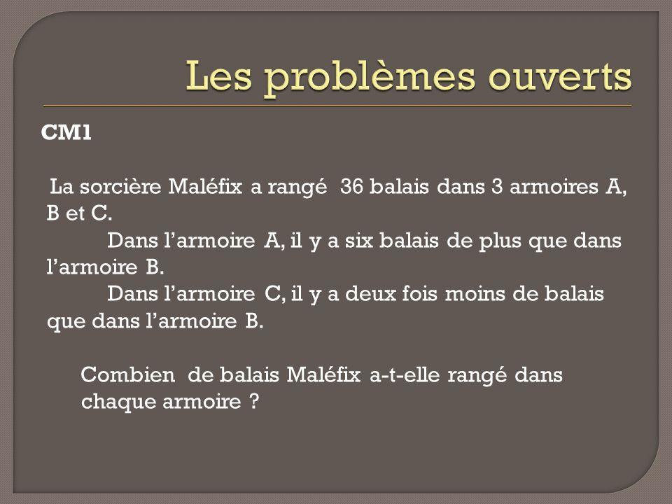 Les problèmes ouverts CM1