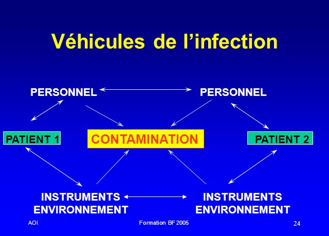 Véhicules de l'infection