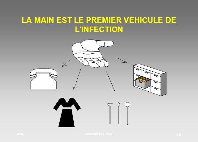 LA MAIN EST LE PREMIER VEHICULE DE L INFECTION