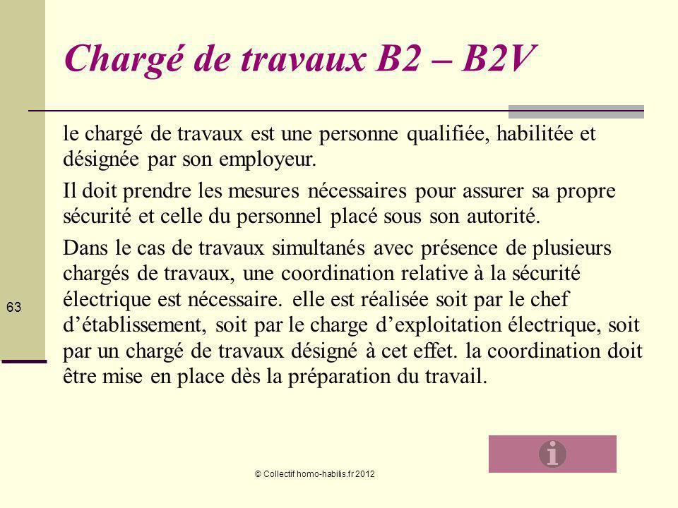 63636363 Chargé de travaux B2 – B2V. le chargé de travaux est une personne qualifiée, habilitée et désignée par son employeur.