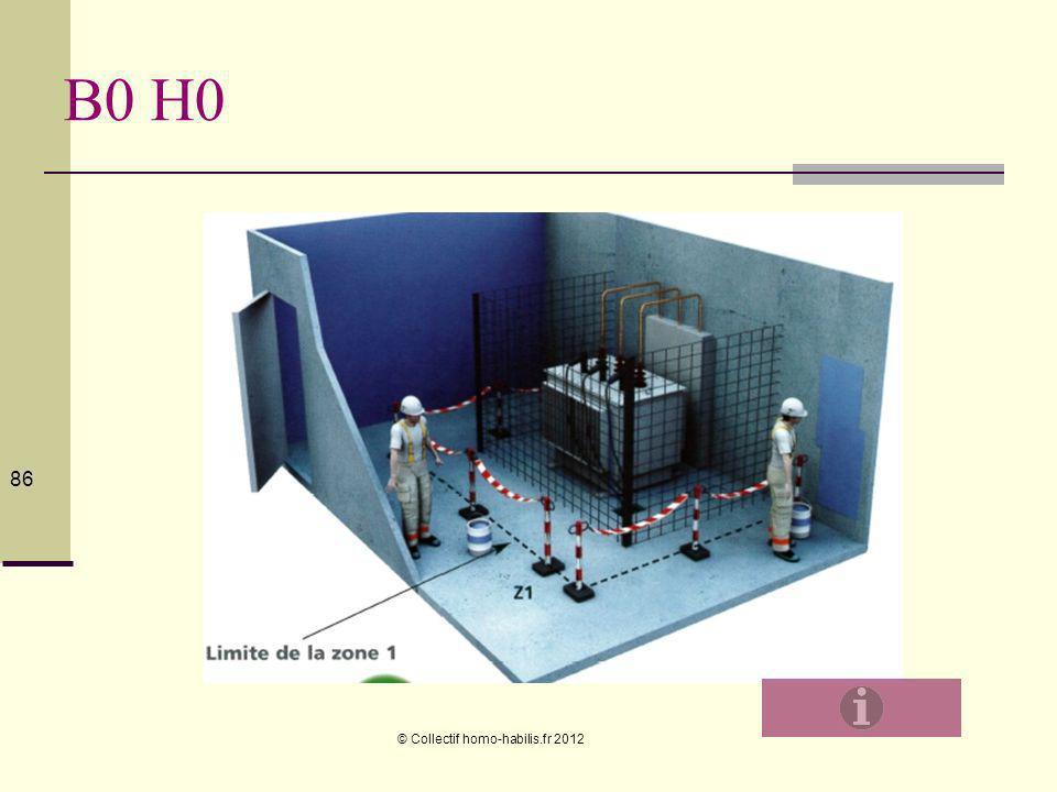 B0 H0 © Collectif homo-habilis.fr 2012