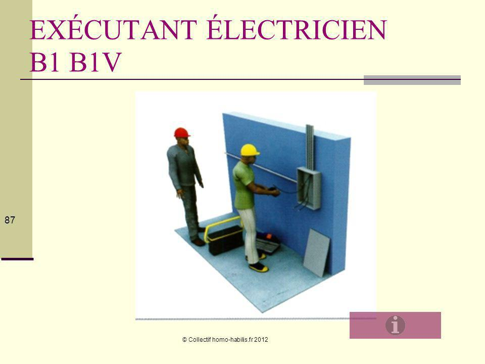 EXÉCUTANT ÉLECTRICIEN B1 B1V