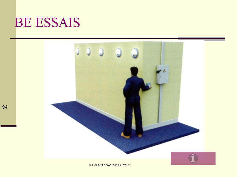 BE ESSAIS © Collectif homo-habilis.fr 2012