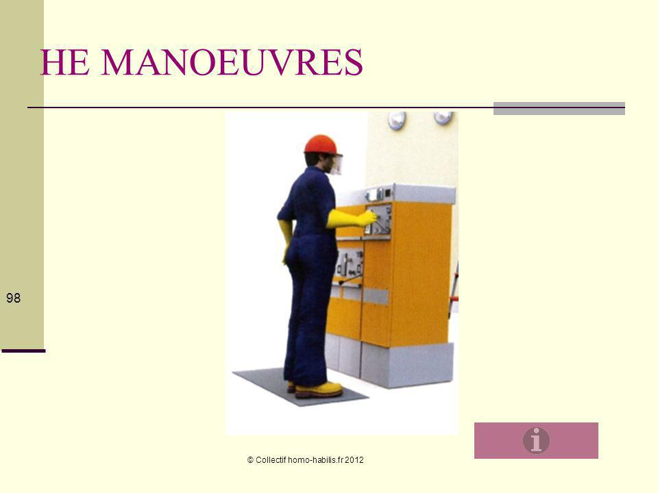 HE MANOEUVRES © Collectif homo-habilis.fr 2012