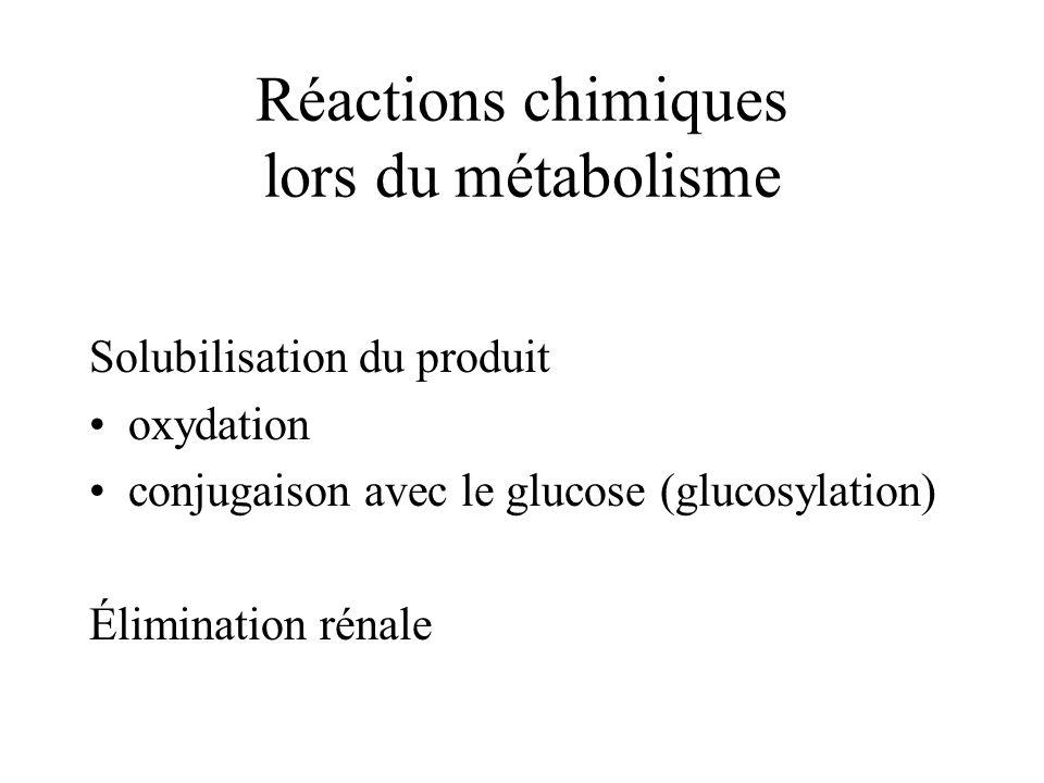 Réactions chimiques lors du métabolisme