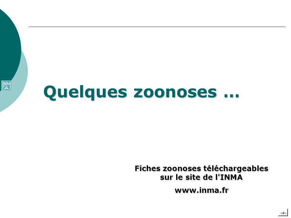 Fiches zoonoses téléchargeables sur le site de l INMA
