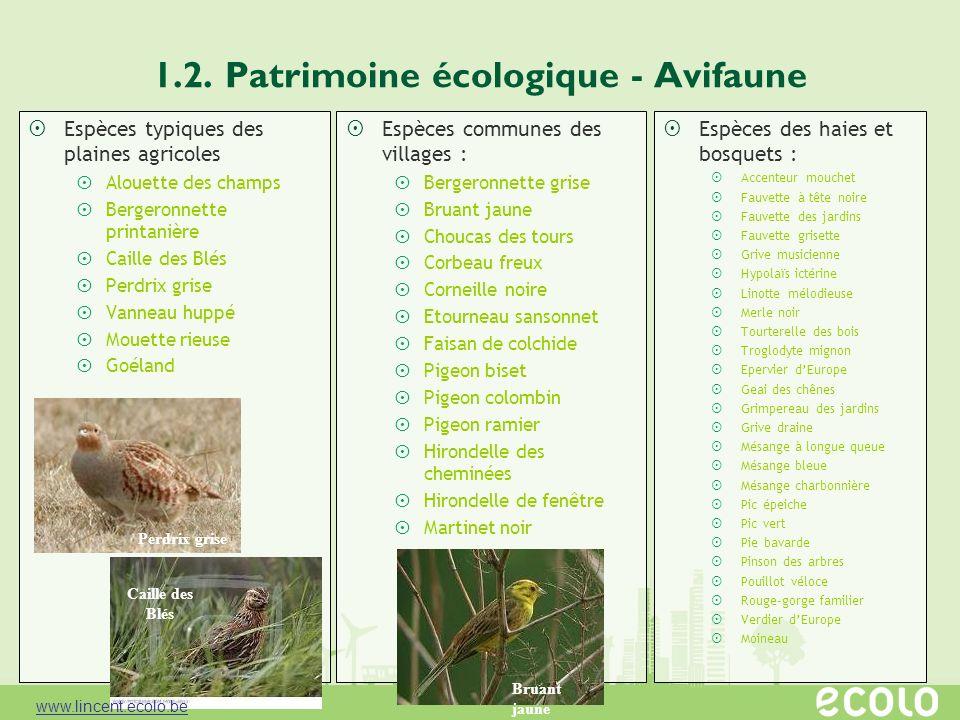 1.2. Patrimoine écologique - Avifaune