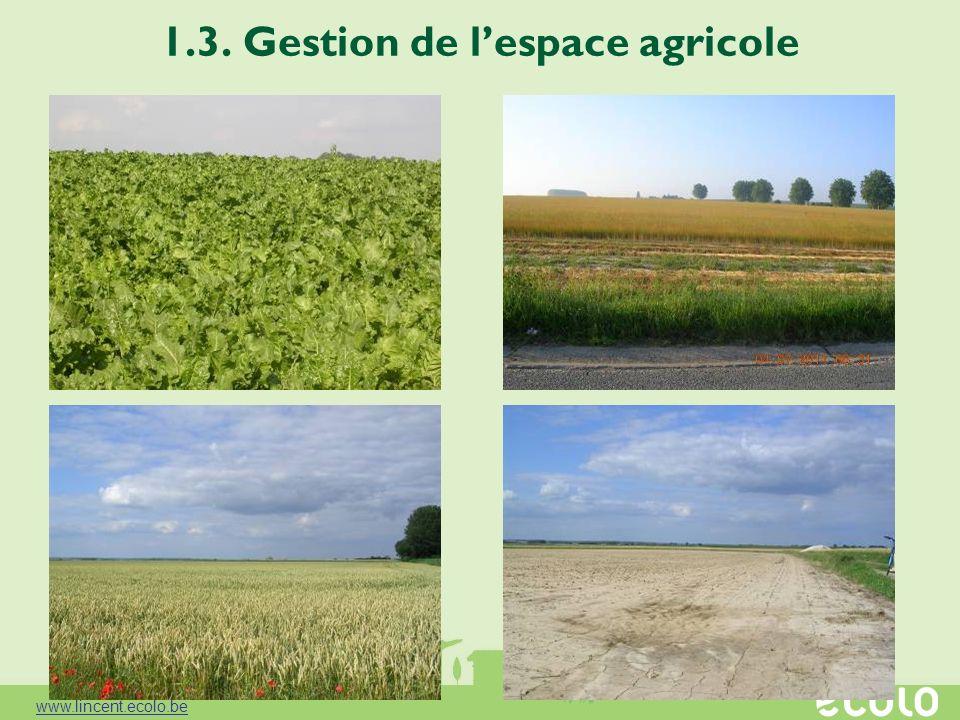 1.3. Gestion de l'espace agricole