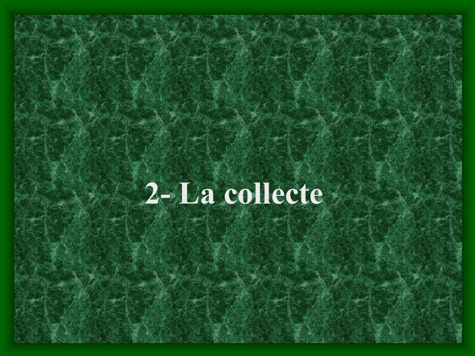 2- La collecte