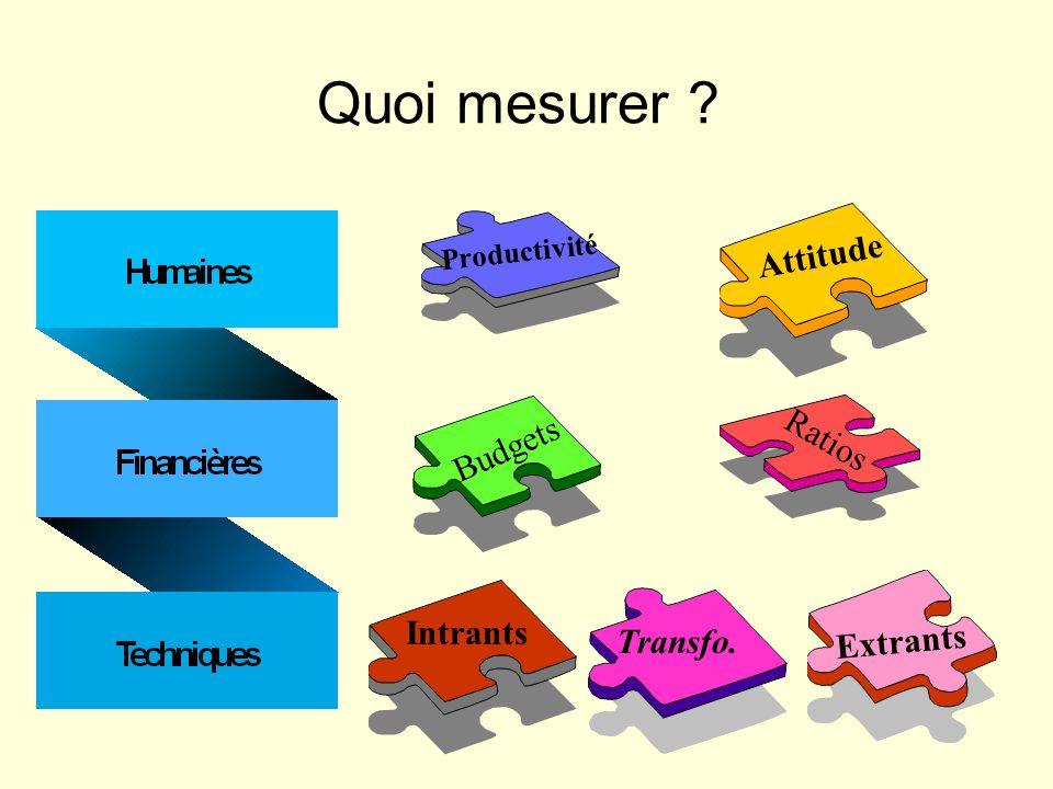 Quoi mesurer Attitude Ratios Budgets Intrants Transfo. Extrants