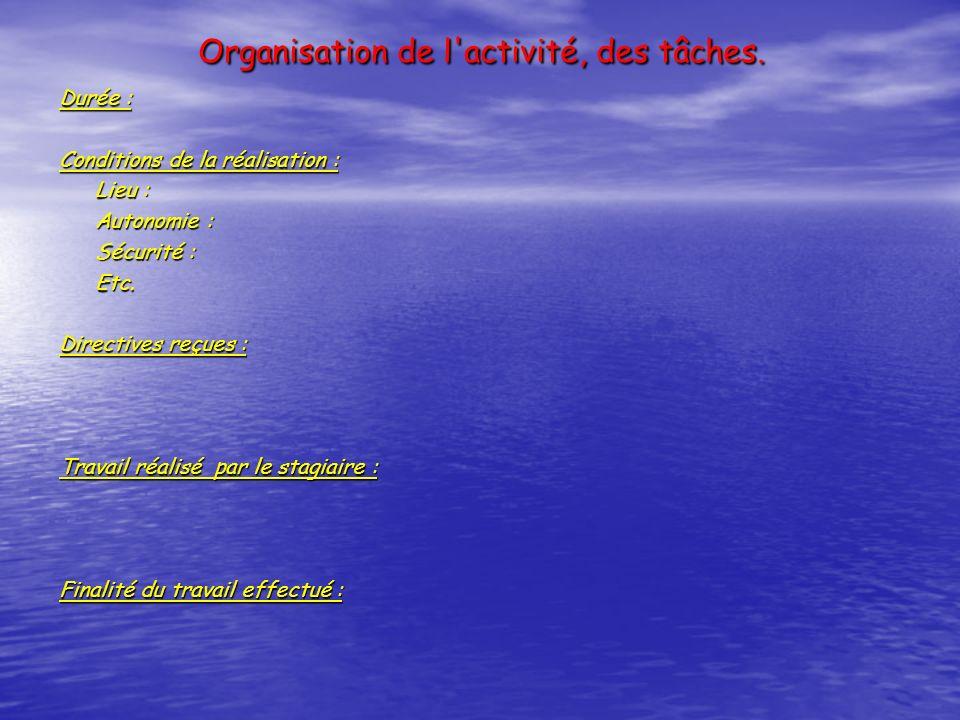 Organisation de l activité, des tâches.