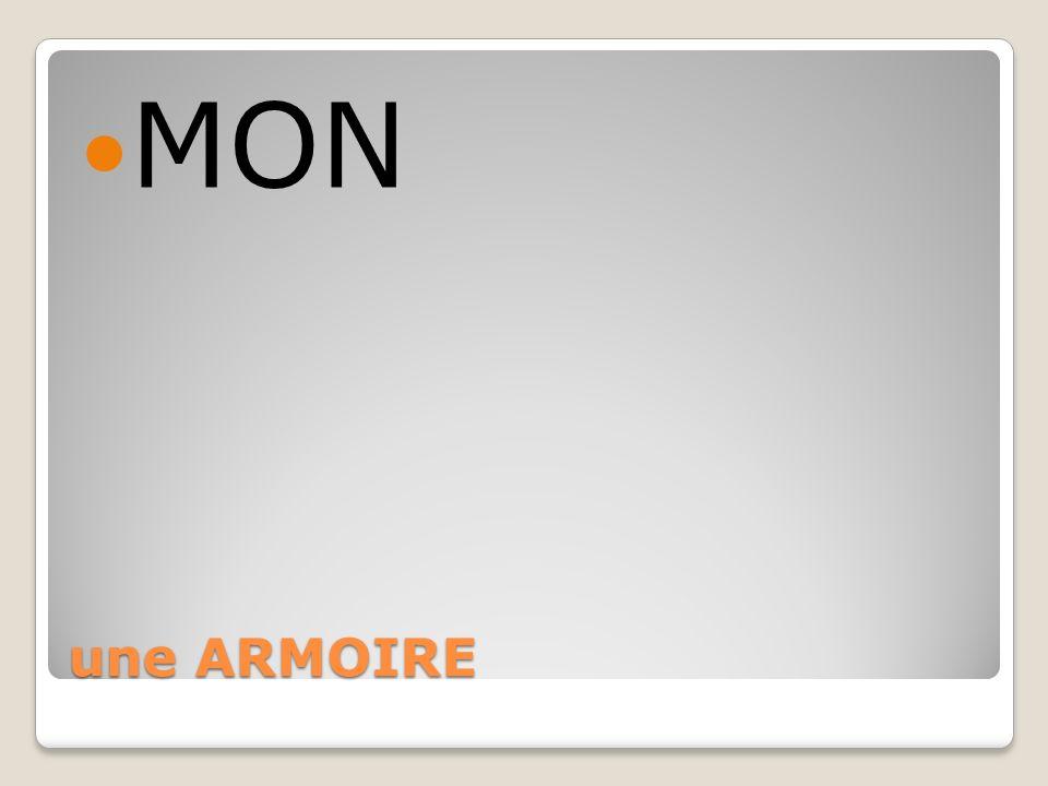 MON une ARMOIRE