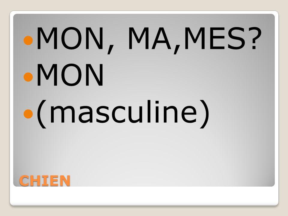 MON, MA,MES MON (masculine) CHIEN