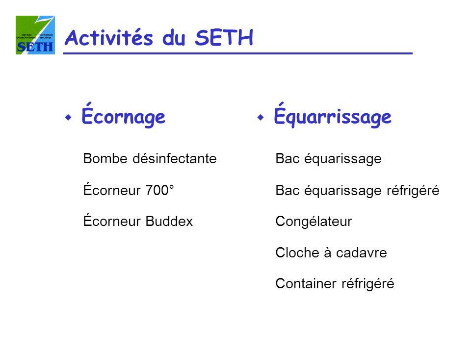 Activités du SETH Écornage Équarrissage Bombe désinfectante