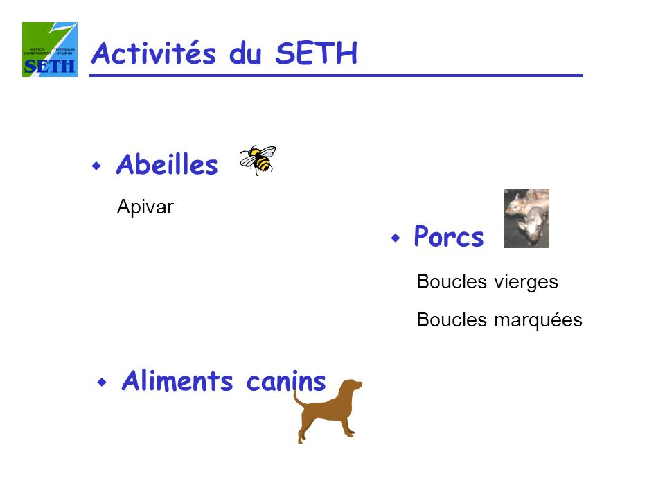 Activités du SETH Abeilles Porcs Aliments canins Apivar