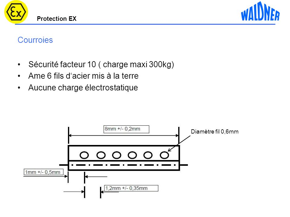 Sécurité facteur 10 ( charge maxi 300kg)