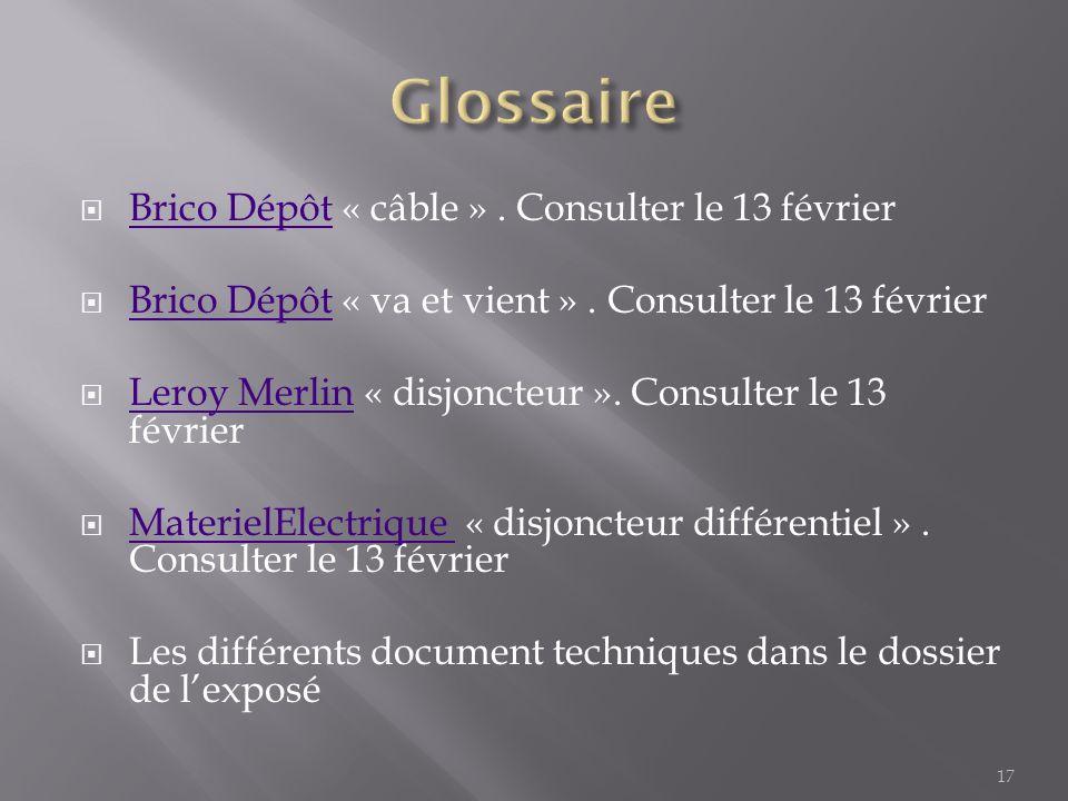 Glossaire Brico Dépôt « câble » . Consulter le 13 février