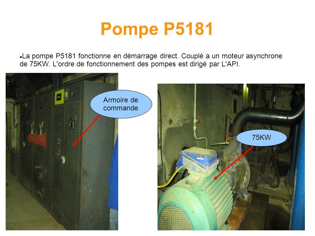 Pompe P5181
